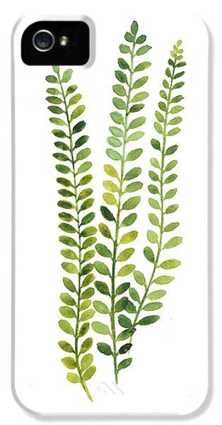 Garden iPhone 5 Case - Green Fern Watercolor Minimalist Painting by Joanna Szmerdt