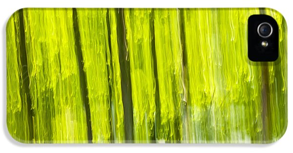 Ecology iPhone 5 Cases - Green forest abstract iPhone 5 Case by Elena Elisseeva