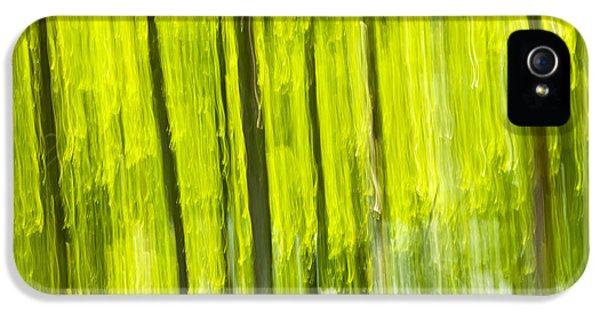 Green Forest Abstract IPhone 5 Case by Elena Elisseeva