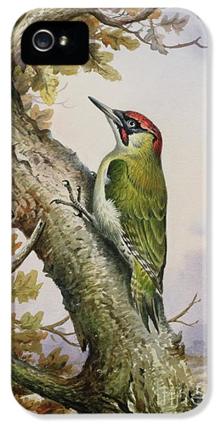 Green Woodpecker IPhone 5 Case