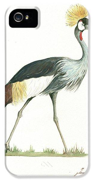 Crane iPhone 5 Case - Grey Crowned Crane by Juan Bosco