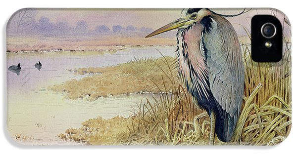 Grey Heron IPhone 5 Case by John James Audubon