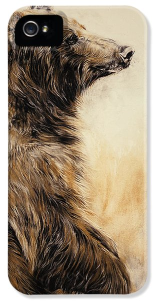 Grizzly Bear 2 IPhone 5 Case