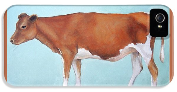 Cow iPhone 5 Case - Guernsey Cow Standing Light Teal Background by Dottie Dracos