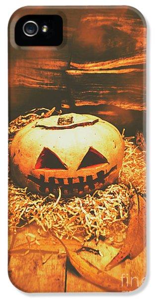 Halloween In Fall. Still Life Pumpkin Head IPhone 5 Case