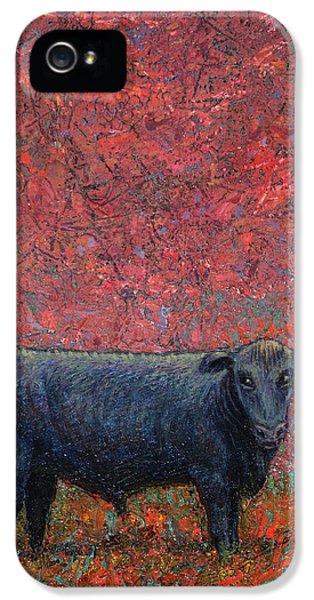 Bull iPhone 5 Case - Hamburger Sky by James W Johnson