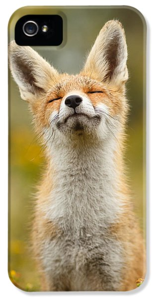 Happy Fox IPhone 5 Case by Roeselien Raimond