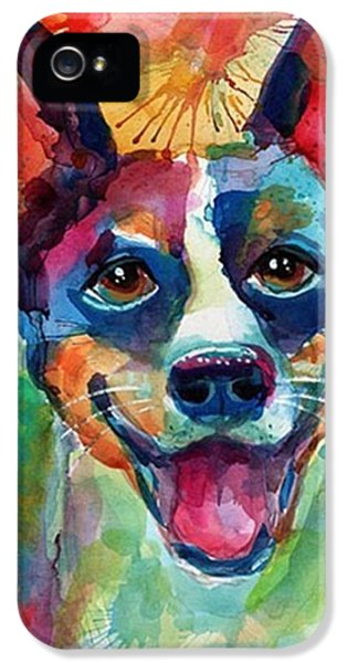iPhone 5 Case - Happy Rat Terrier Watercolor Portrait by Svetlana Novikova