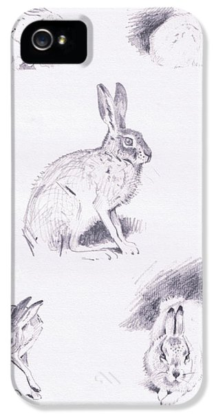 Hare Studies IPhone 5 Case by Archibald Thorburn
