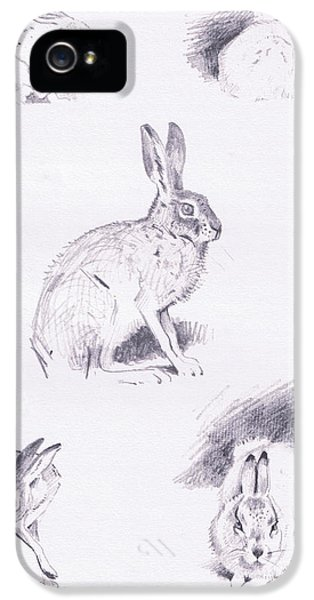 Hare Studies IPhone 5 / 5s Case by Archibald Thorburn