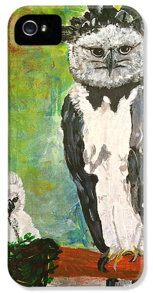 Harpy Eagle With Fledgling IPhone 5 Case by Dagmar Batyahav