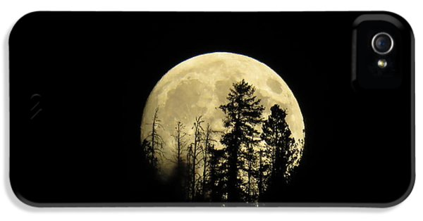 IPhone 5 Case featuring the photograph Harvest Moon by Karen Shackles