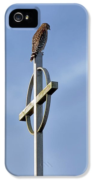 Hawk On Steeple IPhone 5 Case by Richard Rizzo