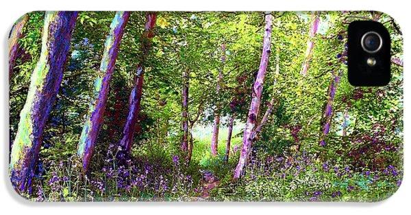 Heavenly Walk Among Birch And Aspen IPhone 5 Case