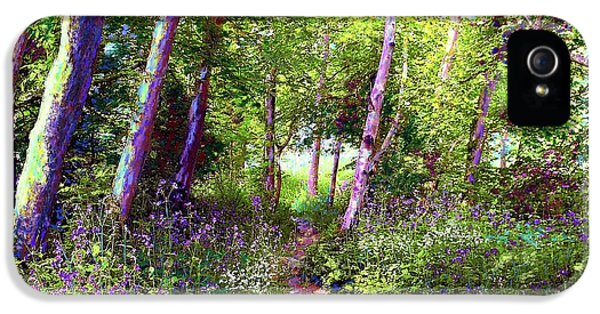 Heavenly Walk Among Birch And Aspen IPhone 5 Case by Jane Small
