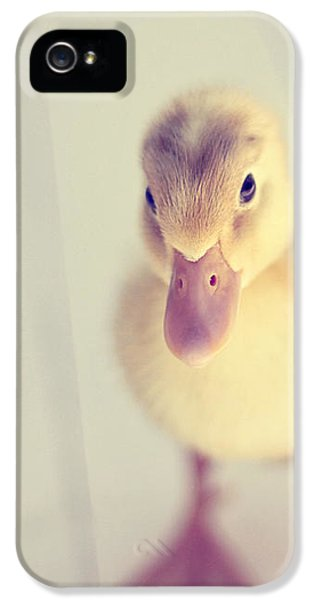 Hello Ducky IPhone 5 / 5s Case by Amy Tyler