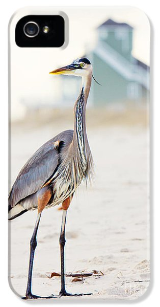 Heron And The Beach House IPhone 5 Case by Joan McCool