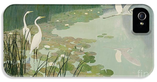 Herons In Summer IPhone 5 Case by Newell Convers Wyeth