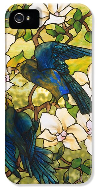 Lovebird iPhone 5 Case - Hibiscus And Parrots by Louis Comfort Tiffany