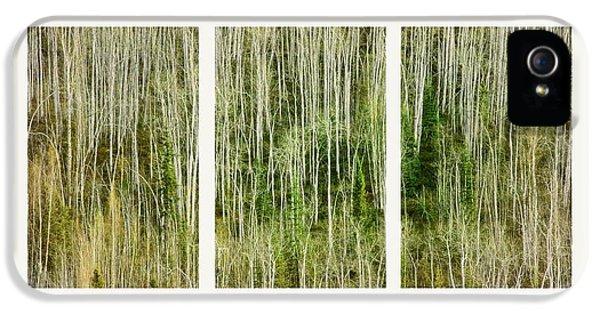 Hillside Forest IPhone 5 Case by Priska Wettstein