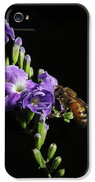 Honeybee On Golden Dewdrop IPhone 5 Case by Richard Rizzo