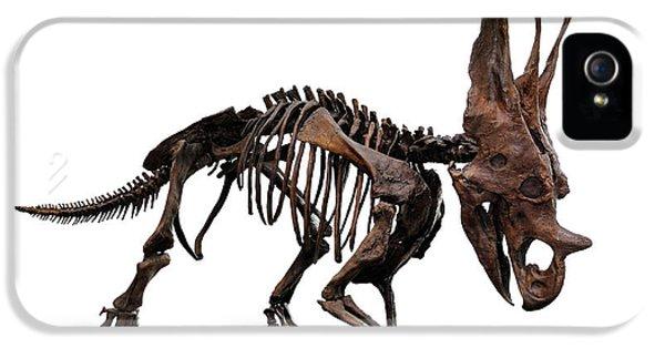 Horned Dinosaur Skeleton IPhone 5 Case