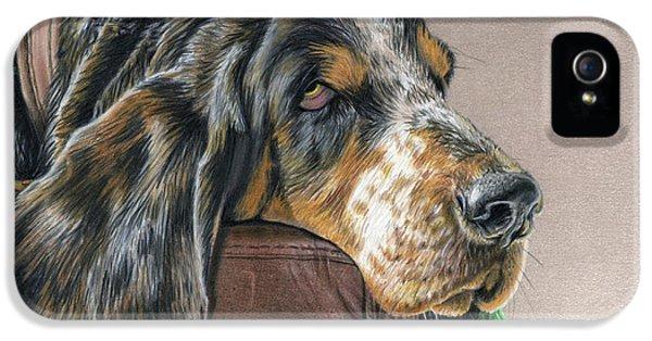 Hound Dog IPhone 5 Case by Sarah Batalka