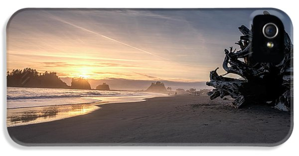 Huge Washed Up Tree Along First Beach In Olympic National Park IPhone 5 Case by Brandon Alms