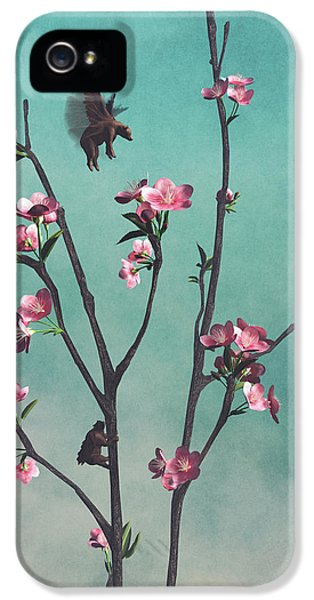 Hummingbears IPhone 5 Case