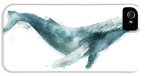 Humpback Whale From Whales Chart IPhone 5 Case by Amy Hamilton