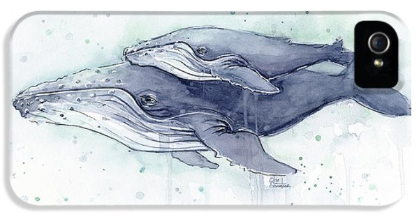 Humpback Whales Painting Watercolor - Grayish Version IPhone 5 Case