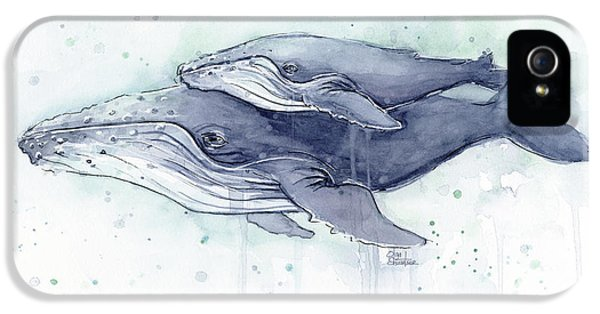Humpback Whales Painting Watercolor - Grayish Version IPhone 5 Case by Olga Shvartsur