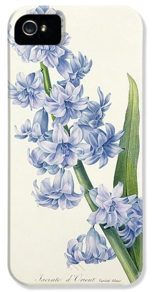 Hyacinth IPhone 5 / 5s Case by Pierre Joseph Redoute