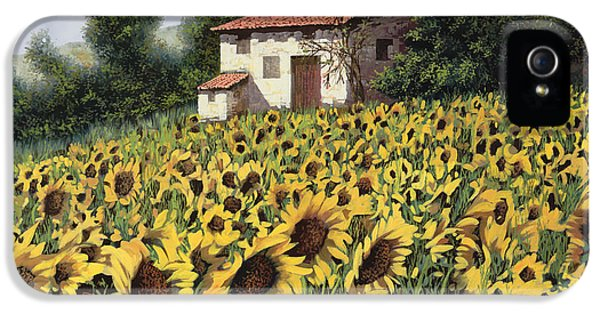 Sunflower iPhone 5 Case - I Girasoli Nel Campo by Guido Borelli