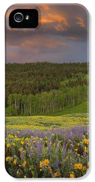 Idaho Spring IPhone 5 Case