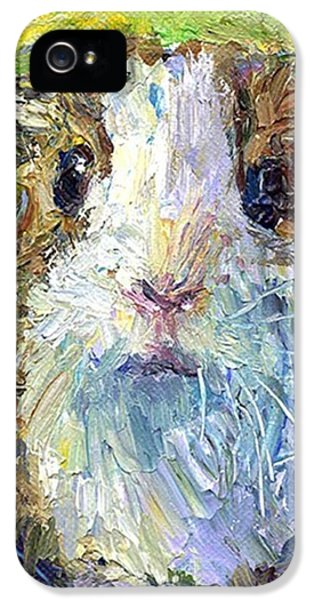 Colorful iPhone 5 Case - Impasto Impressionistic  Guinea Pig Art by Svetlana Novikova