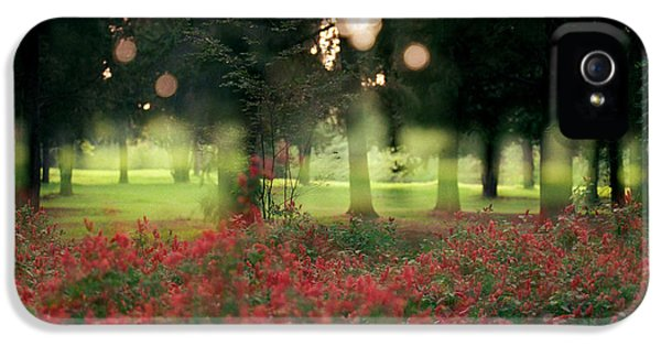 IPhone 5 Case featuring the photograph Impression At The Yarkon Park by Dubi Roman