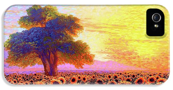Nebraska iPhone 5 Case - In Awe Of Sunflowers, Sunset Fields by Jane Small
