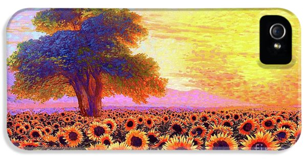 Sunflower iPhone 5 Case - In Awe Of Sunflowers, Sunset Fields by Jane Small