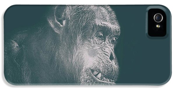 Orangutan iPhone 5 Case - In Deep Thought by Martin Newman