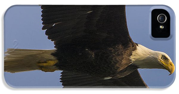 IPhone 5 Case featuring the photograph In Flight by Gary Lengyel