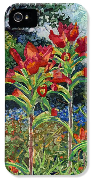 Indian Spring IPhone 5 Case