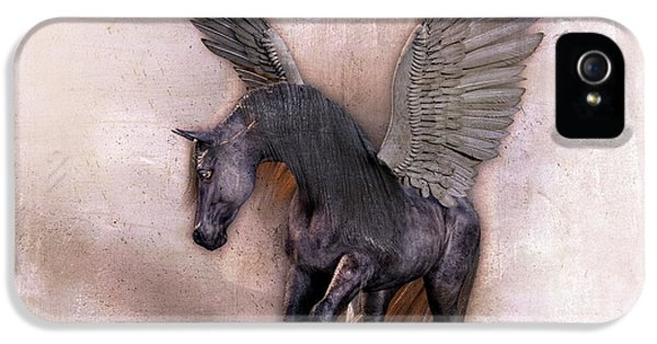 Pegasus iPhone 5 Case - Indian Wind Song by Betsy Knapp