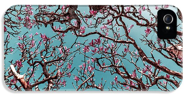 Infrared Frangipani Tree IPhone 5 Case by Stelios Kleanthous