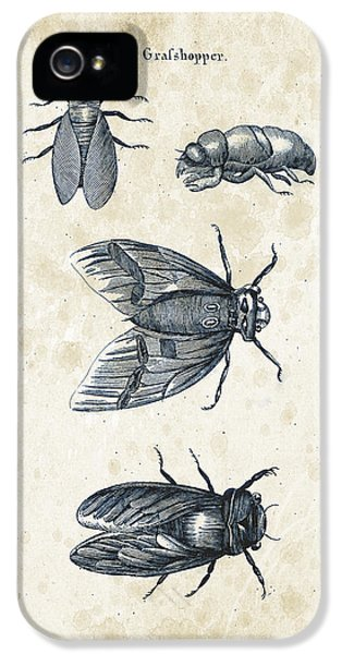 Insects - 1792 - 07 IPhone 5 Case by Aged Pixel