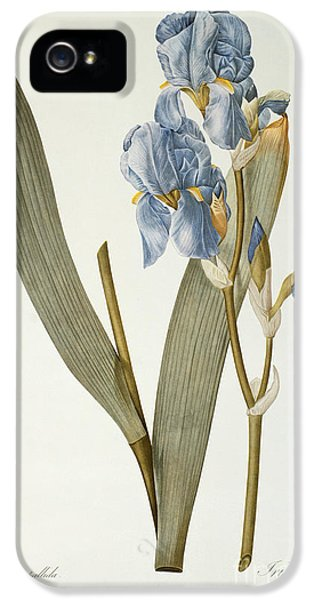 Iris Pallida IPhone 5 Case