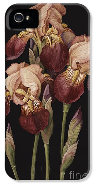 Irises IPhone 5 / 5s Case by Jenny Barron