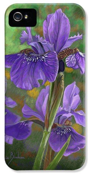 Irises IPhone 5 Case by Lucie Bilodeau