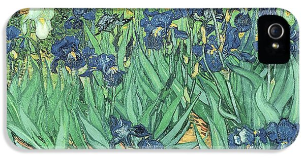Garden iPhone 5 Cases - Irises iPhone 5 Case by Vincent Van Gogh