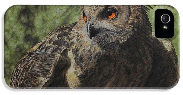 Owl iPhone 5 Case - Ivan by Jennifer Watson
